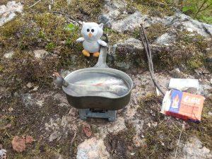 Owly in Stockholm - am kochen