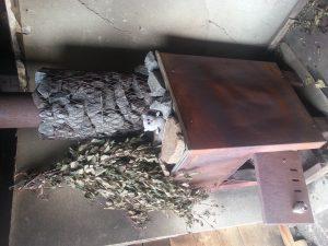 Owly in der kleinen Sauna 2