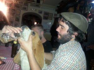 Sogar die Hunde trinken